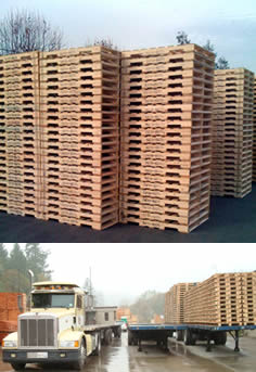cutter lumber pallets in livermore